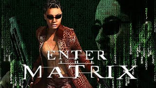 Enter The Matrix Review - Gggmanlives