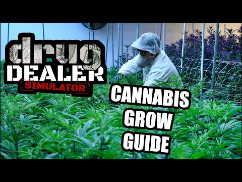 How To Grow Cannabis In The New Drug Dealer Simulator Update