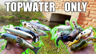 Topwater ONLY Bank Fishing Challenge!!! (MASSIVE Blow-ups)