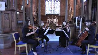 Crazy Little Thing Called Love (Queen) Wedding String Quartet