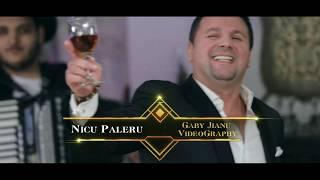 Descarca Nicu Paleru - CAND BEAU, MI SE SCHIMBA FATA HIT 2020