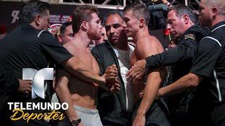 Canelo y Golovkin se encaran, empujan y calientan pesaje   Boxeo Telemundo   Telemundo Deportes