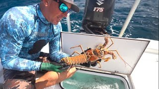 LOBSTER & LION FISH Catch Clean and Cook ( GIANT SHARK ENCOUNTER !!! )