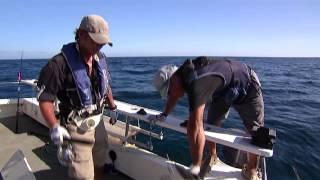 #001 母なる大地アフリカ・ケニア深遠の海で夢に挑む!