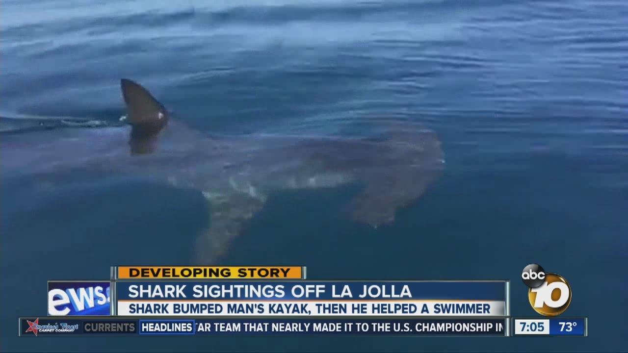 Giant shark off San Diego shore - YouTube