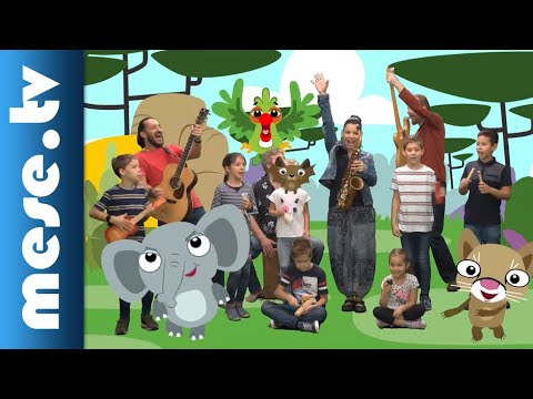 Kiskalász együttes: Gyere az állatkertbe! - MESE TV thumbnail