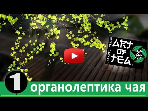 зеленый чай википедия —