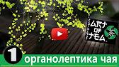 Чайный магазин - Искусство чая - The Art of Tea - YouTube