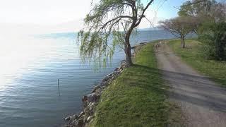 Lago Trasimeno Sant'Arcangelo visto dal drone - Umbria drone - Xiaomi Mi Drone 4K