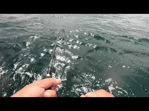 Hawkesbury Fishing