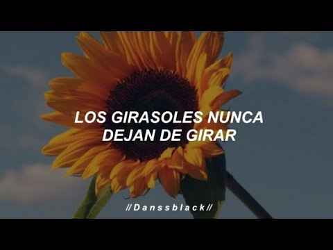 Luis Fonsi Girasoles Letra Youtube