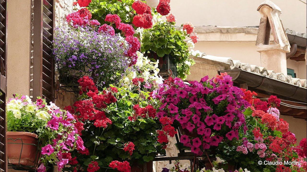 SPELLO Balconi e vicoli fioriti 2014 - Full HD - YouTube
