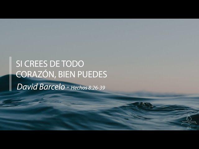 Si crees de todo corazón, bien puedes - David Barceló
