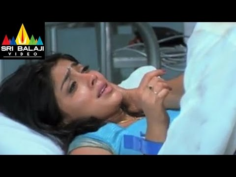 Nenunnanu Songs | Nenunnanani Video Song | Nagarjuna, Aarti Aggarwal, Shriya | Sri Balaji Video