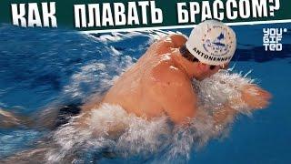 Как правильно плавать брассом? Данил Антоненков.(В этом выпуске мы научимся технике плавания брассом. Это один из сложнейших стилей плавания! Познав его..., 2015-03-31T08:07:39.000Z)