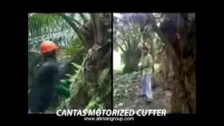 Mesin Cantas Kelapa Sawit Motorize cutter Palm Oil