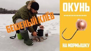 ЛОВЛЯ ОКУНЯ зимой на мормышку Зимняя рыбалка на окуня со льда