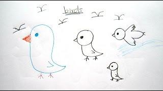 draw easy birds cartoon drawing beginners