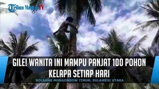 Gambar cover Gile! Wanita IniMampu Panjat 100 Pohon Kelapa SetiapHari