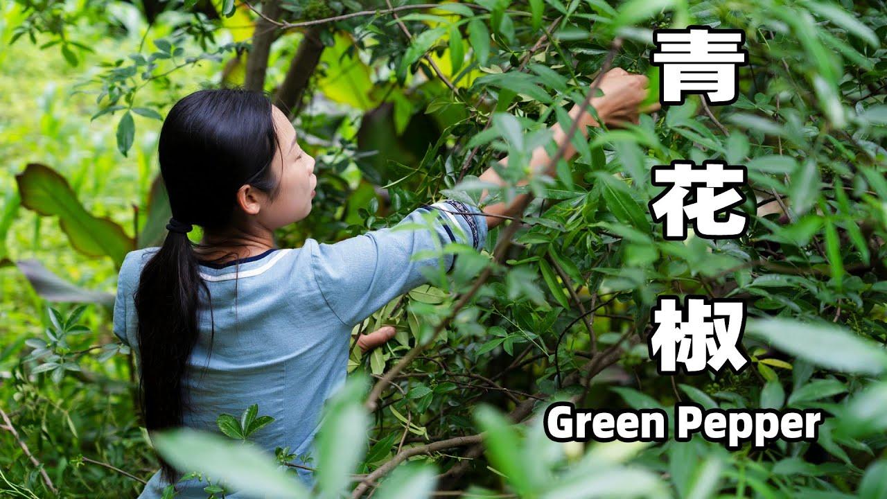 青花椒: 一個走進千家萬戶的調料 | Chinese food made with Green Pepper