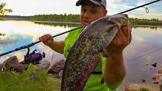 Рыбалка на сома с ночевкой Чуть не утонул напарник Сомы ломают наши спиннинги