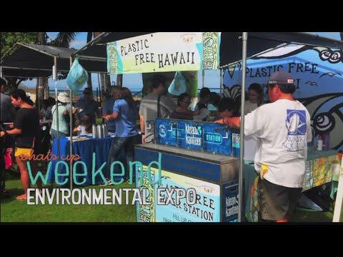 What's Up Weekend: Reggae bash, night market and family fun at the Waikiki Aquarium