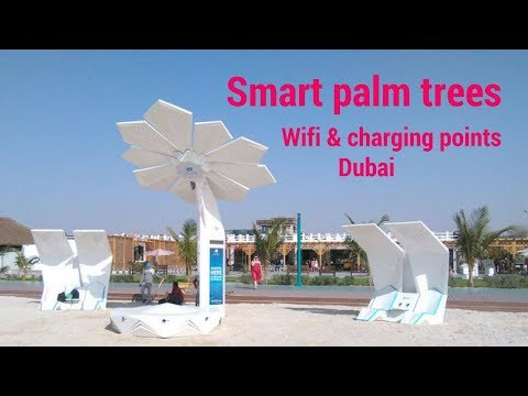 Solar powered smart palm trees with wifi & charging points in dubai