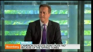 David Cameron: Don't Leave UK Because of 'Effing Tories'