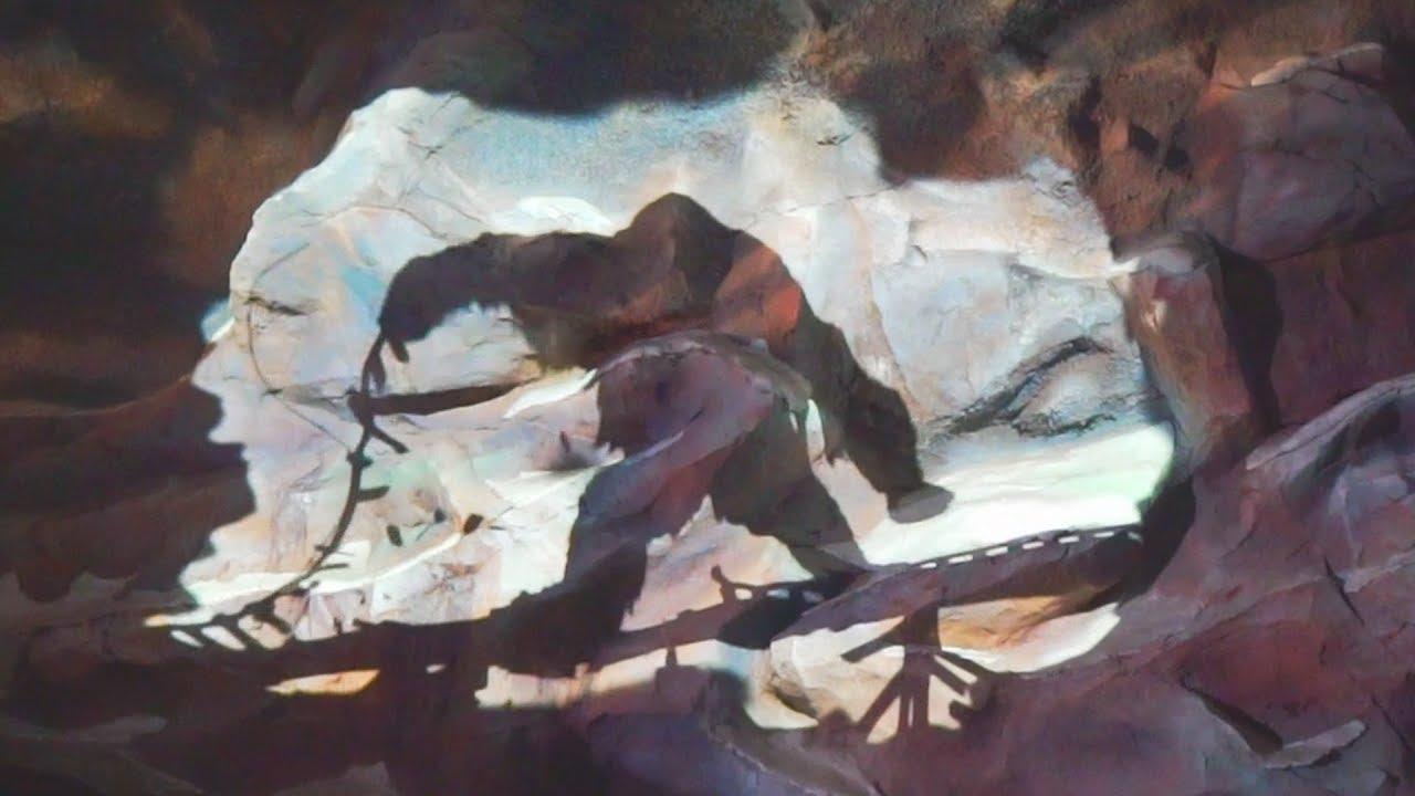 Expedition Everest (On-Ride) Animal Kingdom - Walt Disney World