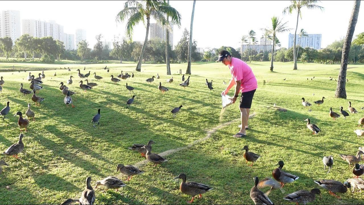 A Man Dedicates His Life To The Animals