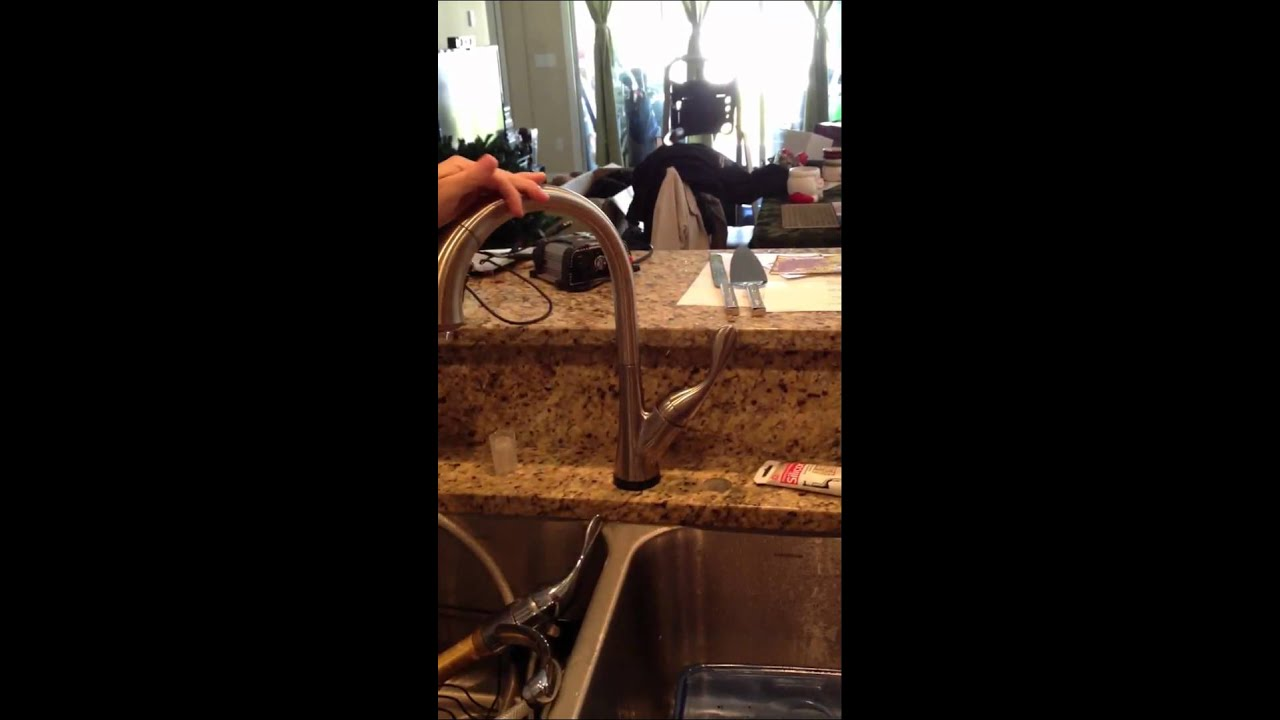 Shop Delta Ashton Stainless 1-Handle Deck Mount Pull-down Kitchen ...