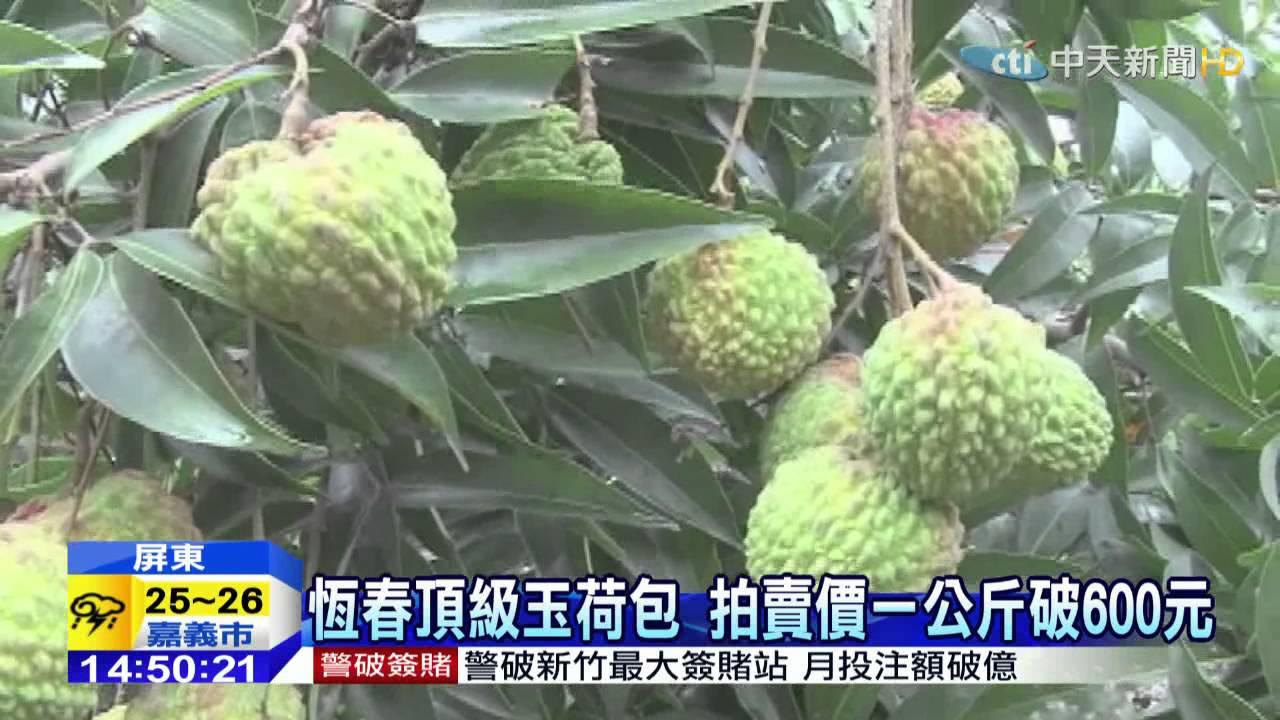 20150521中天新聞 荔枝比雞蛋大! 改良玉荷包新品成功 - YouTube