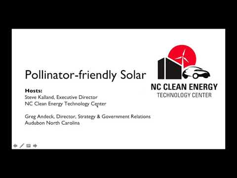NC Clean Energy Tech Center: Pollinator-Friendly Solar