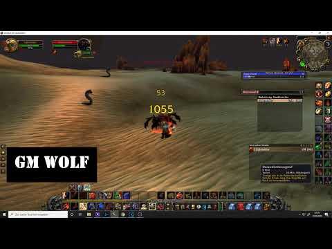 Tödliches Wüstengift | WoW Quest | GM Wolf | World Of Warcraft Classic | HD