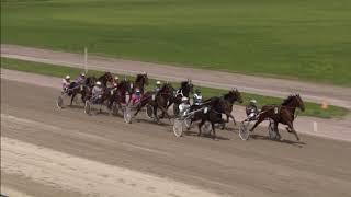 Vidéo de la course PMU PRIX RICK EBBINGE - CHAMPION DU MONDE