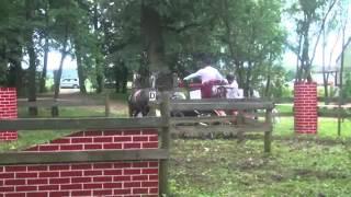 ARON POWOZY - Konie i Powozy Rokosowo 10.06.2012 cd. 1