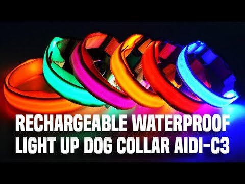 Flashing Glow In The Dark Dog Collar AIDI-C3 | Rechargeable Waterproof Light Up Dog Collar