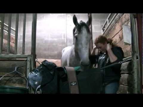 Horse Racing Trainer Amanda Gregory