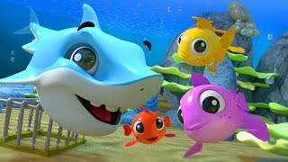 3 pecesitos se Fueron a Nadar | Canción Infantil | Three Little Fish Went to Swim | Spanish Rhymes thumbnail
