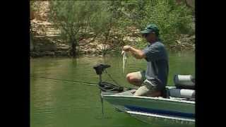 Jara y Sedal | La pesca del black bass