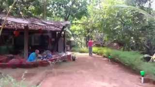 Property tour at Namaste Yoga Farm in 2015