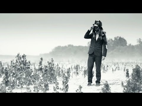 Gruff Rhys - Walk Into The Wilderness (FULL ALBUM STREAM)