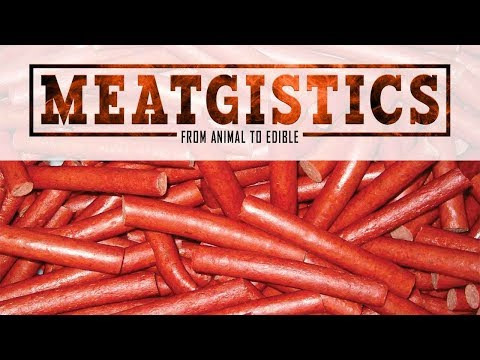Meatgistics: How To Make Snack Sticks At WALTONSINC.COM