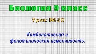Биология 9 класс (Урок№20 - Комбинативная и фенотипическая изменчивость.)