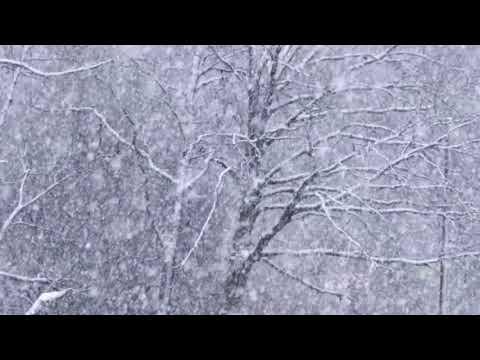 Ева Польна - Снег | 2020