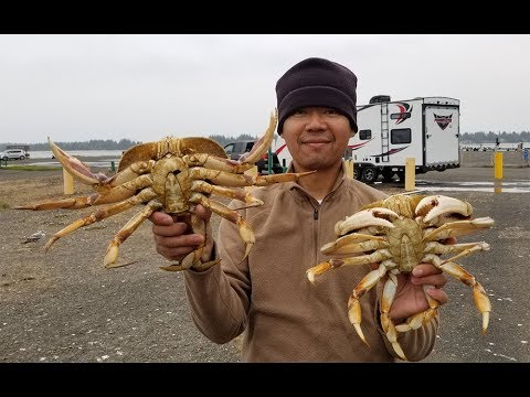 How to catch crab with a crab hawk - Oregon crabbing