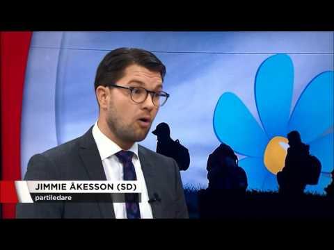 Jimmie Åkesson utfrågas i TV4 av Ulf Kristofferson