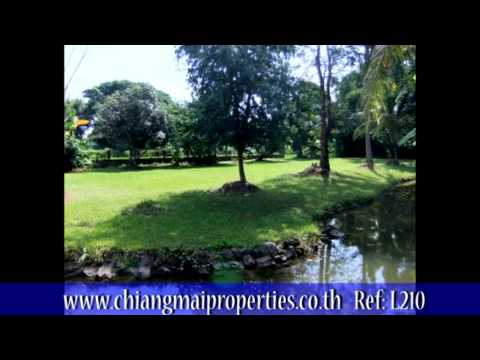 4 Unique Plots of Land for Sale in Chiang Mai, Northern Thailand