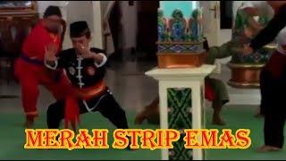 IKSPI Sabuk Merah Strip Emas Bambang Sunarja ✔️