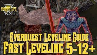 Eq Leveling Guide
